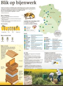 Blik op bijenwerk